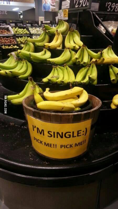 Ich bin Single, nimm mich! (via 9gag.com)