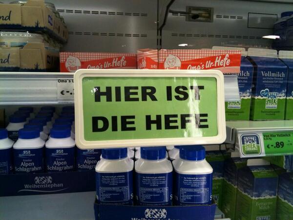 hieristdiehefe-dotti