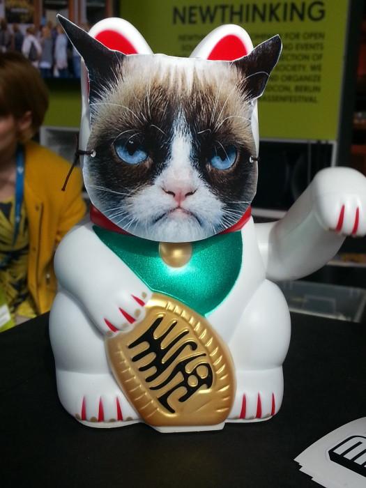 Grumpy Winke-Cat